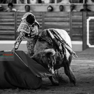 gahirupe_pablo_aguado_villaseca_2017- (7)