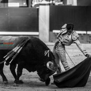 gahirupe_joselito_adame_2018- (6)