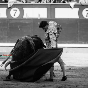 gahirupe_curro_diaz_alcurrucen_2018 (7)