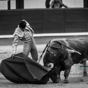 gahirupe_joselito_adame_alcurrucen_2018 (6)