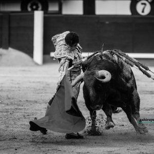 gahirupe_juan_del_alamo_alcurrucen_2018 (10)