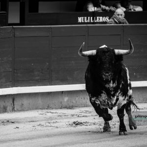 gahirupe_ventorrillo_madrid_2018 (1)