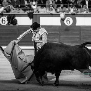 gahirupe_alejandro_talavante_madrid_puerta_grande_2018- (3)