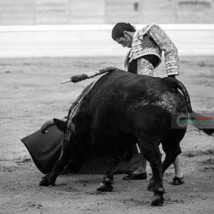 gahirupe_alejandro_talavante_madrid_puerta_grande_2018- (9)