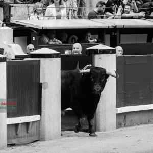 gahirupe_dolores_aguirre_madrid_2018- (1)