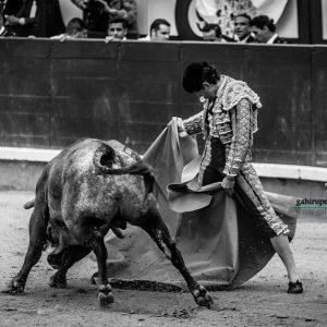 gahirupe_sebastian_ritter_madrid_saltillo_2018- (5)