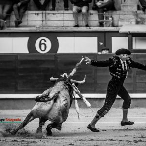 gahirupe_curro_robles_saltillo_madrid_2018- (2)