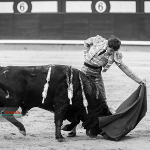 gahirupe_fernando_plaza_montealto_2019- (9)