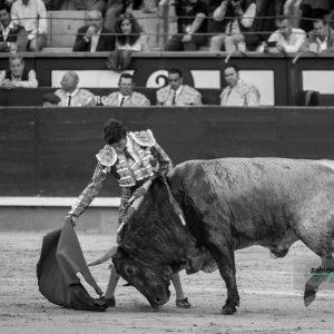 gahirupe_fernando_robleno_jose_escolar_madrid_2019- (6)