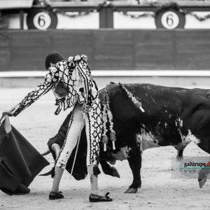 gahirupe_francisco_jose_espada_goyesca_2019- (15)