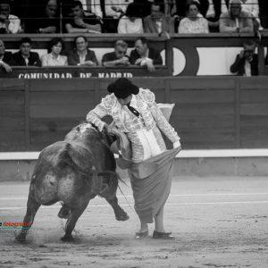gahirupe_gomez_del_pilar_jose_escolar_madrid_2019- (3)