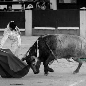 gahirupe_gomez_del_pilar_jose_escolar_madrid_2019- (6)