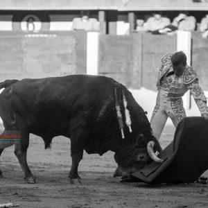 gahirupe_javier_cortes_pedraza_madrid_2019- (6)