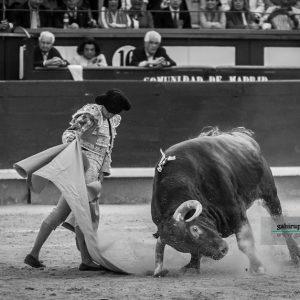 gahirupe_juan_del_alamo_el_pilar_2019- (16)