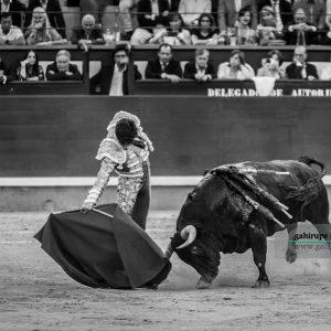 gahirupe_alvaro_lorenzo_alcurrucen_madrid_2019- (3)