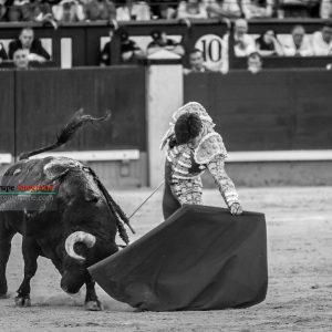 gahirupe_alvaro_lorenzo_alcurrucen_madrid_2019- (4)