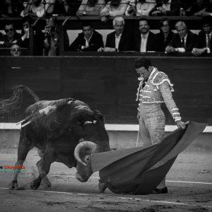gahirupe_antonio_ferrera_alcurrucen_madrid_2019- (3)