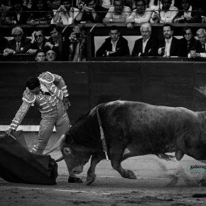 gahirupe_antonio_ferrera_alcurrucen_madrid_2019- (4)