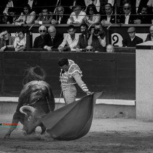 gahirupe_antonio_ferrera_alcurrucen_madrid_2019- (6)