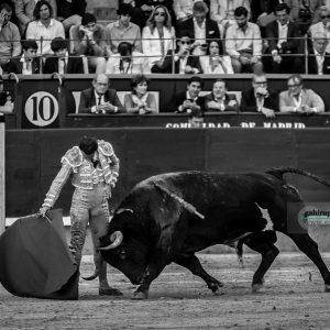 gahirupe_antonio_ferrera_alcurrucen_madrid_2019- (8)