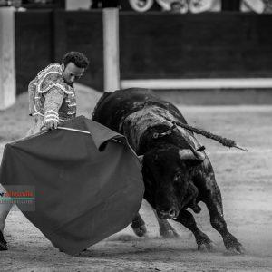 gahirupe_antonio_ferrera_alcurrucen_madrid_2019- (9)
