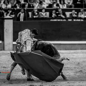 gahirupe_diego_urdiales_alcurrucen_madrid_2019- (5)