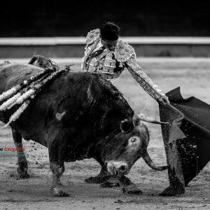 gahirupe_diego_urdiales_alcurrucen_madrid_2019- (7)