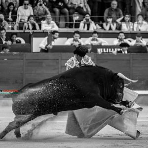 gahirupe_morenito_de_aranda_fuente_ymbro_madrid_2019- (3)