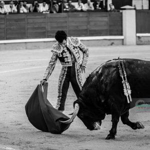 gahirupe_morenito_de_aranda_fuente_ymbro_madrid_2019- (6)