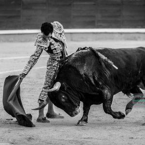 gahirupe_morenito_de_aranda_fuente_ymbro_madrid_2019- (9)