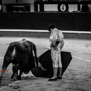 gahirupe_pablo_aguado_montalvo_2019- (5)