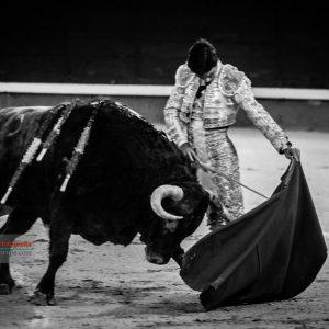 gahirupe_pablo_aguado_montalvo_2019- (7)