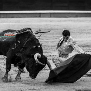 gahirupe_paco_urena_alcurrucen_madrid_2019- (14)