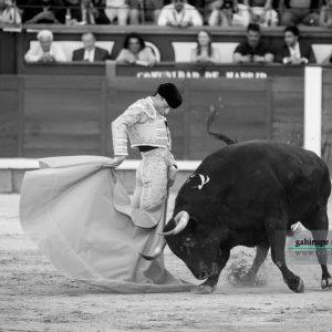 gahirupe_paco_urena_alcurrucen_madrid_2019- (2)