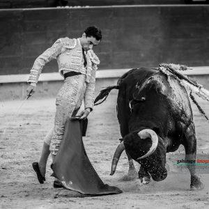 gahirupe_paco_urena_alcurrucen_madrid_2019- (6)