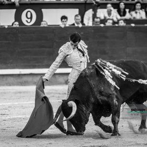 gahirupe_paco_urena_alcurrucen_madrid_2019- (7)