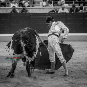 gahirupe_cristobal_reyes_villaseca_2018- (8)