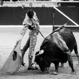 gahirupe_francisco_de_manuel_villaseca_iban_2019- (8)